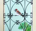 CDKG10 - Sparrow